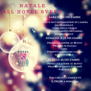 Natale 2016 all